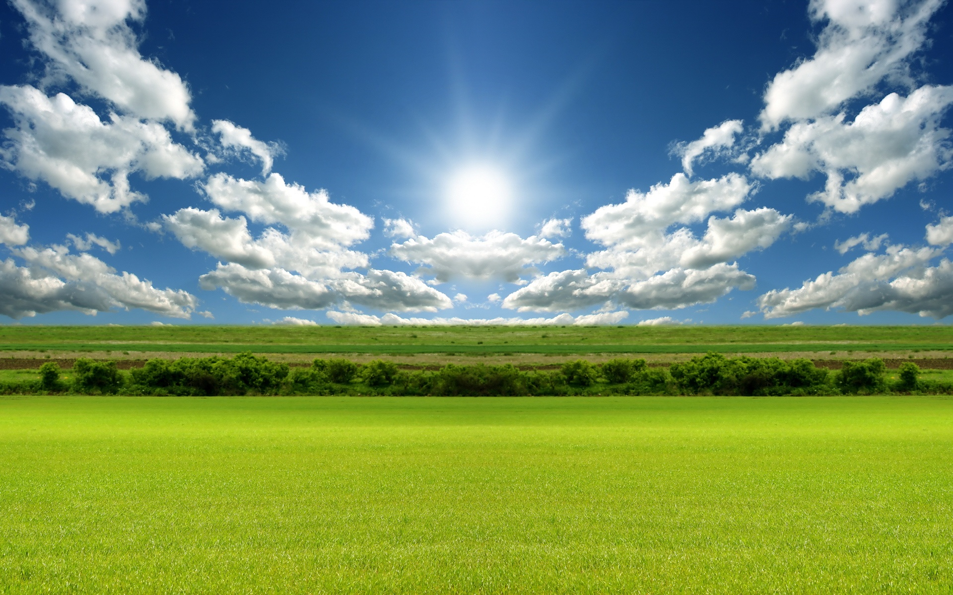 Nature_Fields_Green_field_under_blue_sky_016242_